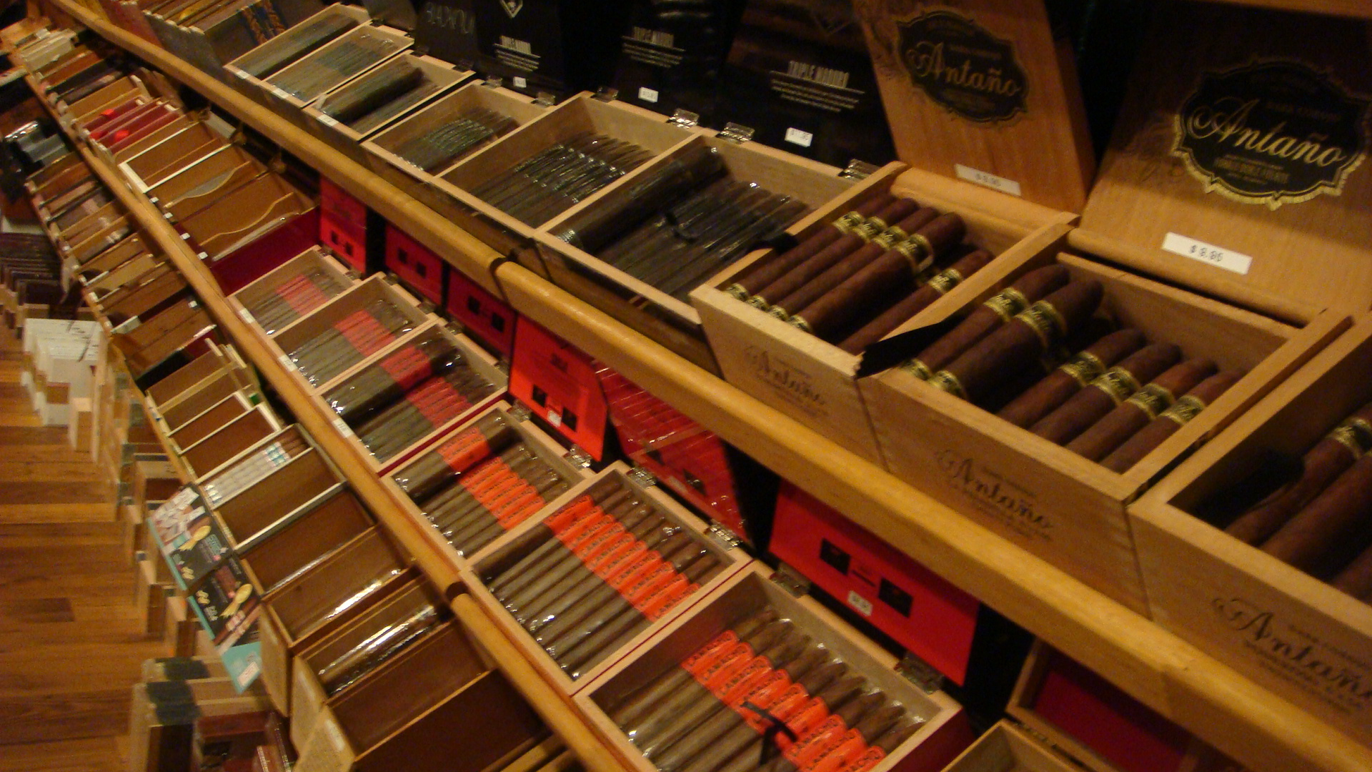 row of cigar boxes in the walk-in humidor